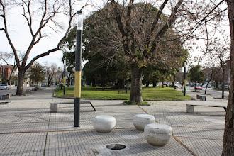 Photo: Marcas de la Memoria (10) Ombú de Ramón Anador. Lugar de frecuentes manifestaciones populares. Vista de Plaza Guernica.