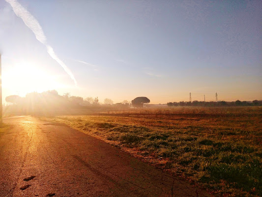 La nebbia  di Terryphoto