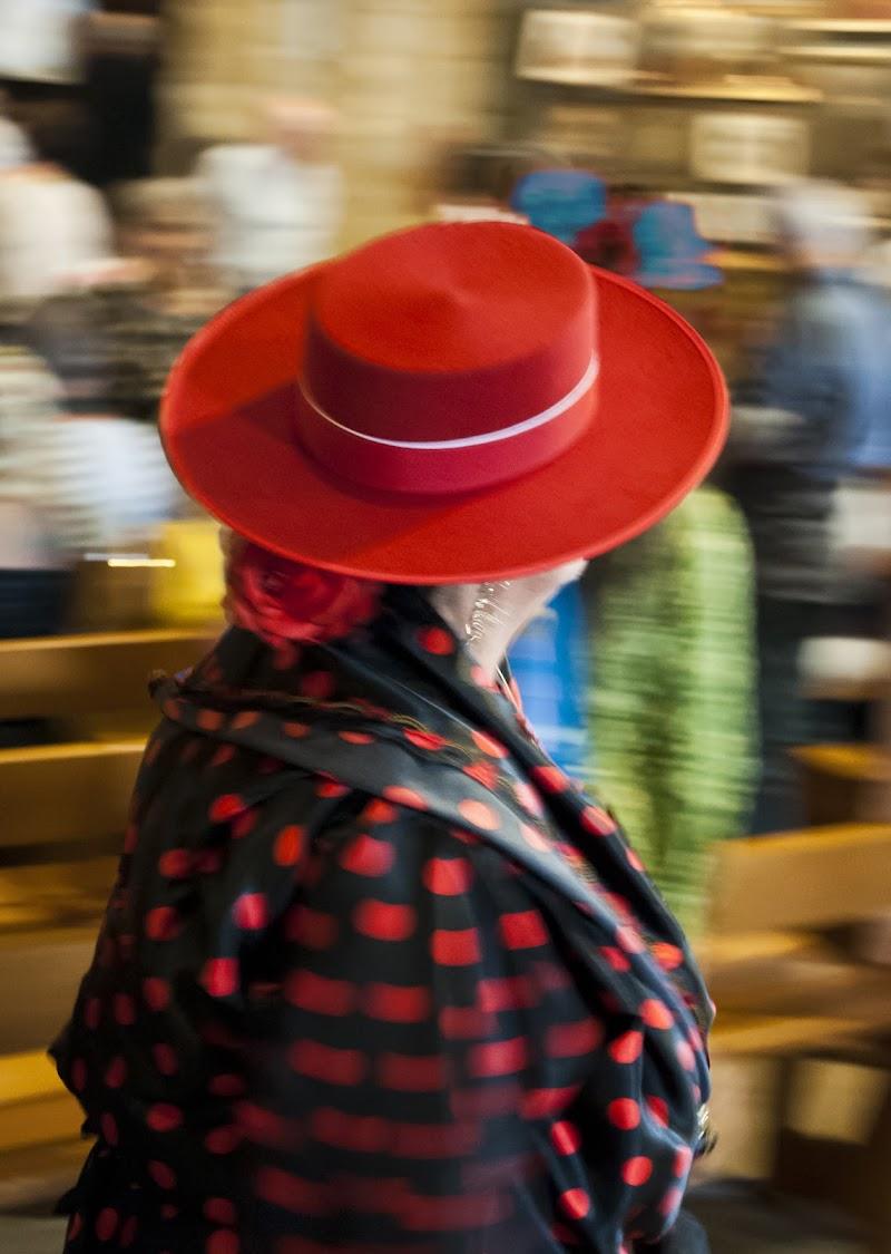 Dama col Cappellino di Daniele Bertoletti