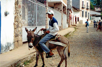 Photo: Kid on a donkey in the mountain town of Copala, our last day trip.