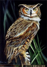 Photo: WL006 Mr. Owl (for 18 x 24 canvas) $7.99