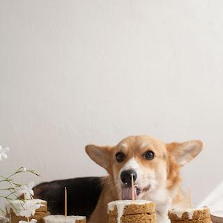 Grain-Free Mini Dog Cakes…for Amelia's Birthday