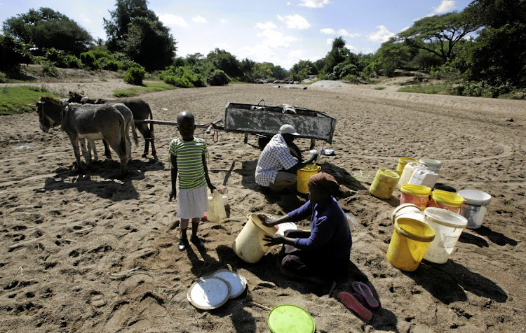 Villagers dig for water in a river bed near drought-hit Masvingo in southeastern Zimbabwe. Picture: REUTERS