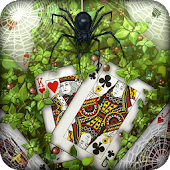 Spider: Solitaire Card Game ♣