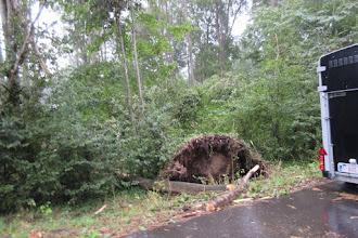 Photo: oorzaken van het stormweer vorig weekend