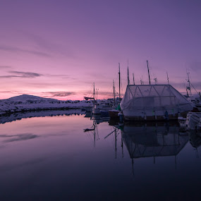 Liland harbour by Benny Høynes - Landscapes Waterscapes