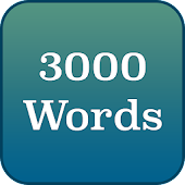 English - 3000 words