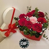 Red Flowers Images Gif