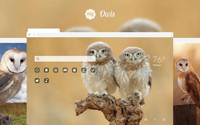 My Owls - Lovely Owl HD Wallpapers