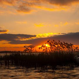 evening pleasure by Enver Karanfil - Landscapes Sunsets & Sunrises ( sunrise, sunset, gölyazı, evening, boat )
