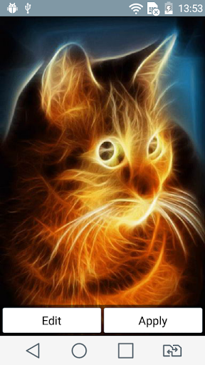 Sunny cat live wallpaper