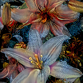 Lilies 12 by Cassy 67 - Digital Art Things