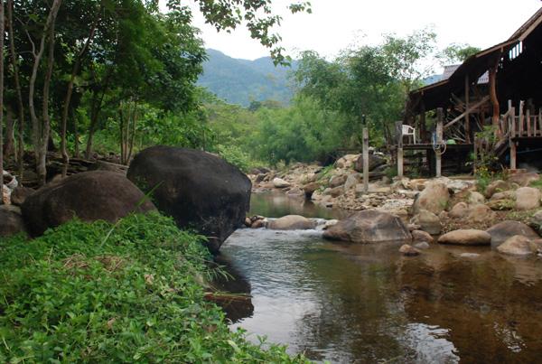 The Cabin Creeks | Thailand Insider
