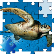 Turtle Jigsaw Puzzle