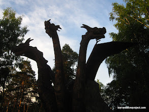 Photo: There be dragons in this park