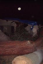 Photo: Neighbors' homes were severely damaged.