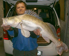Photo: Keserű István, 7 kilós süllő, 2005. november
