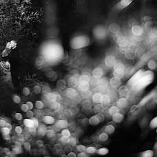 Wedding photographer Aleksandr Grebenev (Nikonor43). Photo of 29.12.2014