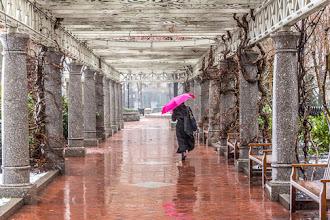 Photo: Pink umbrella in a storm, Boston, Massachusetts, USA
