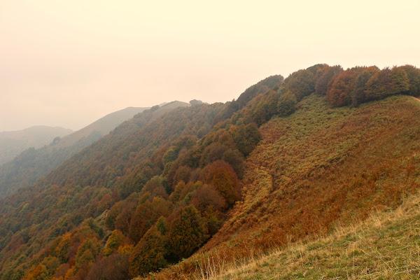 L'autunno. di Francerizz