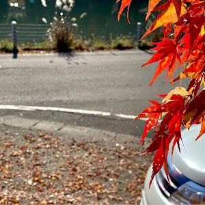 セレナ CC25 ライダー パフォーマンス スペックのカスタム事例画像 シェリルさんの2020年11月23日17:09の投稿