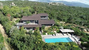 villa à Pianottoli-Caldarello (2A)