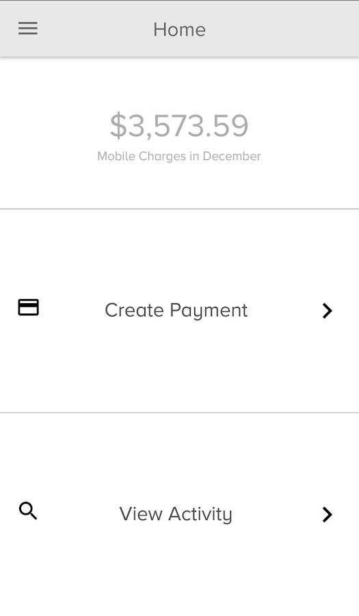 PaymentSpring- screenshot