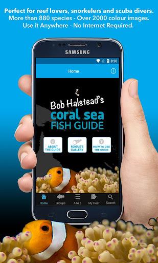 Coral Sea Fish Guide