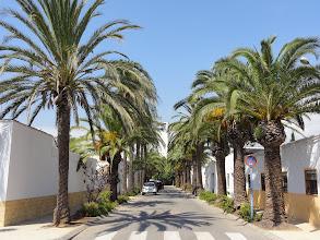 Photo: The village of Poblenou del Delta