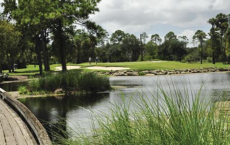 marsh golf.jpg