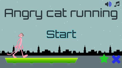 Angry cat running