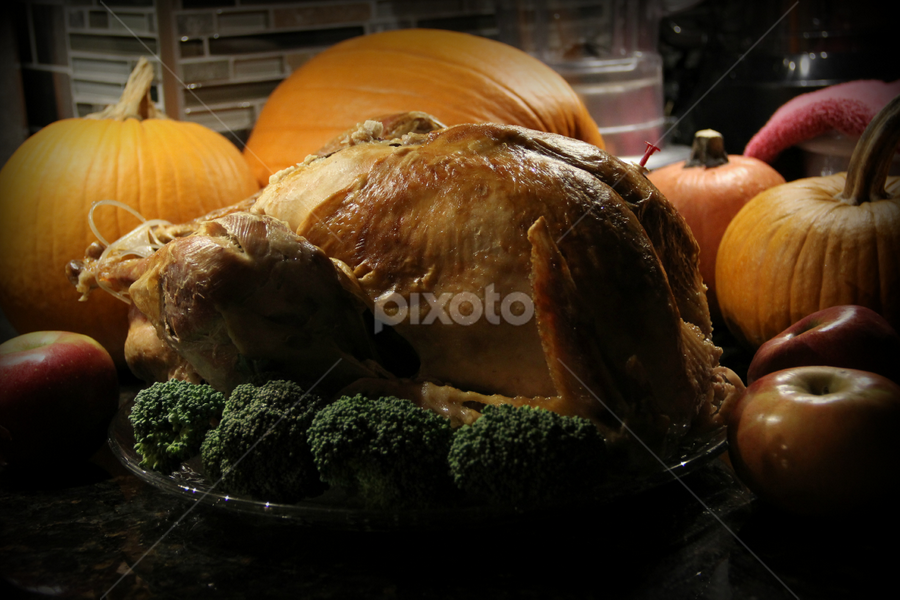 Turkey by Freda Nichols - Food & Drink Meats & Cheeses ( food, pumpkins, broccoli, pwcturkey, apples, thanksgiving, turkey )
