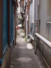 Photo: ねこと路地