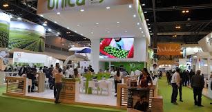 Desde 2009, año en el que se inauguró la empresa, Unica Group ha promovido el trabajo y la cooperación en equipo.