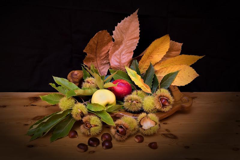 I colori dell'autunno di Giancarlo Lava