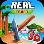 Real Craft 3D 1.1