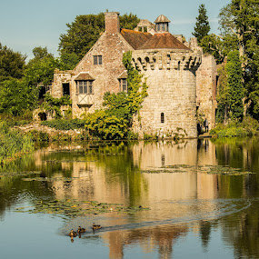 Scotney Castle,  Essex by Mike Hayter - Buildings & Architecture Public & Historical ( scotney castle, reflection, castle, lake, national trust )