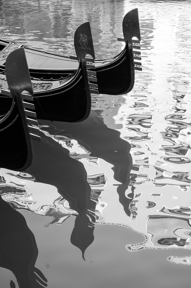 Venice di danilomateraphotography