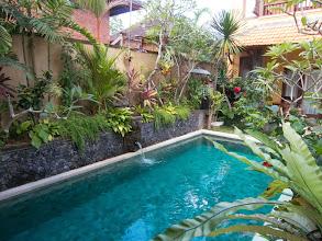 Photo: Pool at Mawa House