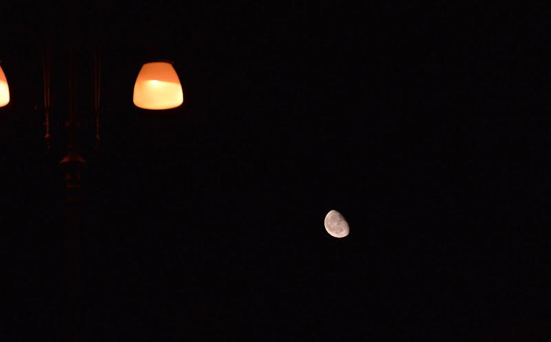 Luna o lampioni di luca_cazzella