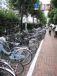 Bike Lane in Tokyo