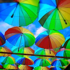 Umbrella Street!  by Subhash Mishra - City,  Street & Park  Skylines ( sky, umbrella, street,  )