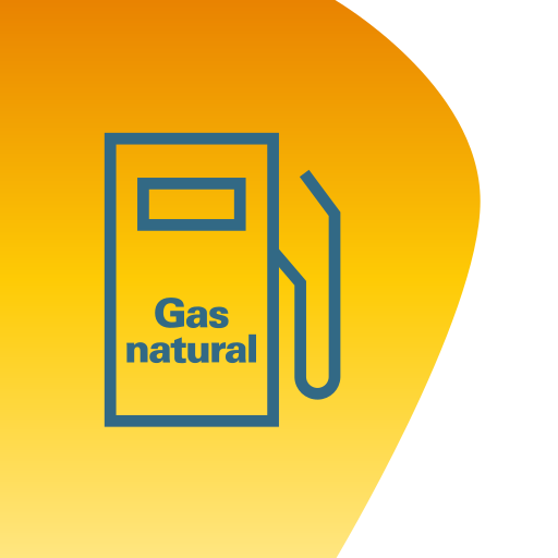 Gas Natural Fenosa: GNV