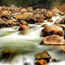 by Abdul Rehman - Nature Up Close Water (  )