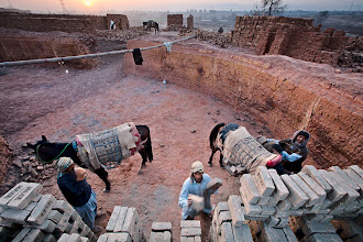 Photo: At dawn Pukhtun (Pashtoon) men stack bricks carried by horses in a brick kiln in Peshawar, Pakistan on February 27, 2008.