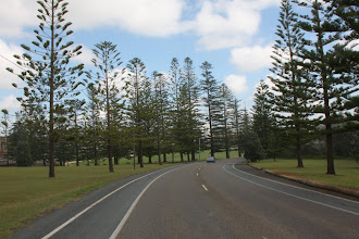 Photo: Year 2 Day 231 - Driving Through Port Macquarie