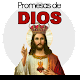 Promesas de Dios (Biblicas) Download for PC Windows 10/8/7