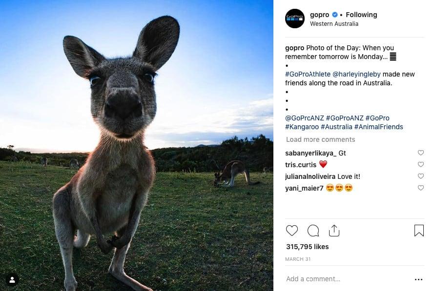 Conta oficial da GoPro no Instagram