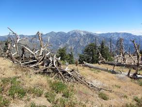 Photo: View east toward Mt. Baldy