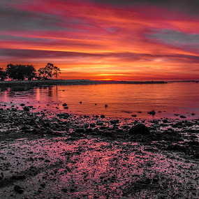 Best sunrise ever by Michael Otero - Landscapes Beaches ( partial black and white, clouds, reflection, warm, red, filter look, fire in the sky )